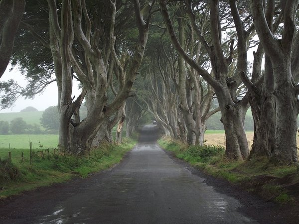 The location of The Dark Hedges. Represented in GOT when Arya Stark escapes from Kings Landing dressed as a boy.