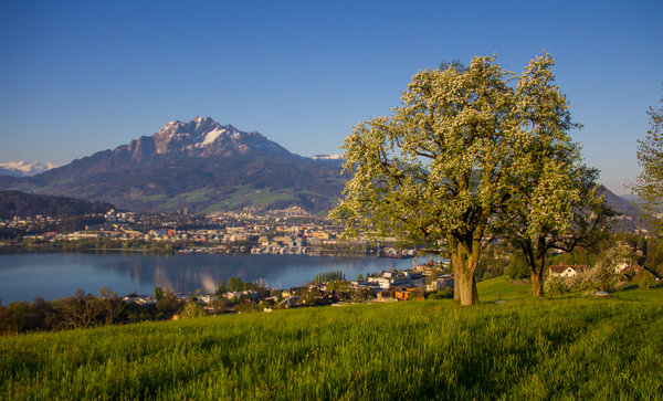 Mount Pilatus near Lucerne in Spring