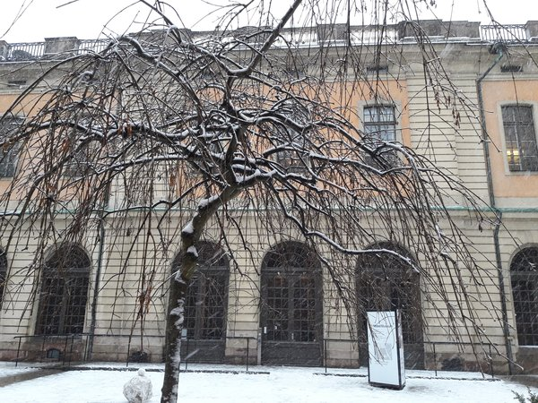The Nobel Museum backyard