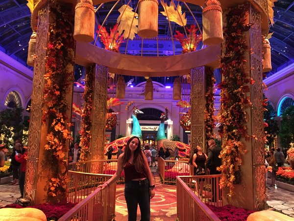 Hotel Bellagio Art Gallery